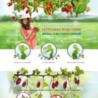 Landing page натуральные ягоды Годжи