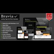 Профессиональный лендинг Bravia
